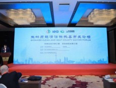 2019全球生物质能创新发展高峰论坛三大分论坛成功举办 ()